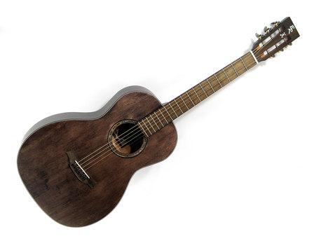 Gitara X11LSPSCC (1)
