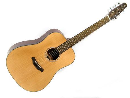 Gitara L1LSD (1)