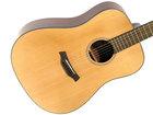 Gitara L1LSD (7)
