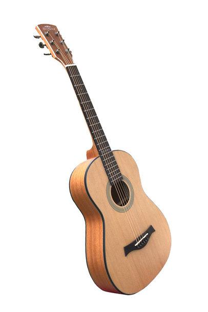 Gitara akustyczna 3/4, Ars Nova Traveller (1)