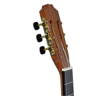 Gitara klasyczna Zebrano (3)