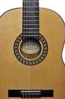 Gitara klasyczna Zebrano (2)