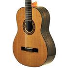 Gitara klasyczna Walnut (3)