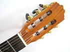 Gitara klasyczna Zebrano DL (7)