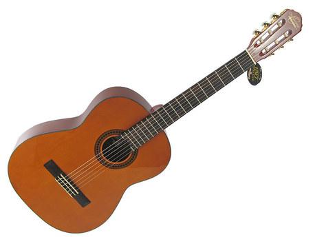 Gitara klasyczna WASHBURN 4/4  (1)