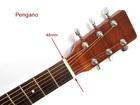 Gitara akustyczna Pengano PF30 (3)