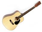 Gitara akustyczna Pengano PF30 (1)